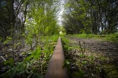 En tur ud i det grønne (Danmark)